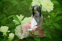 yoshinoblog.jpg